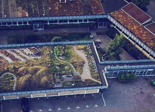 Augustenborg <br/>Botaniska Takträdgård